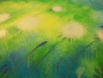 Closeup of Sunlit Meadows